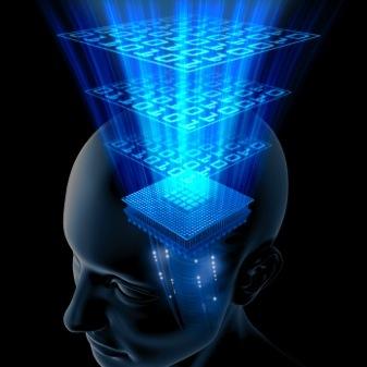 brain_consciousness